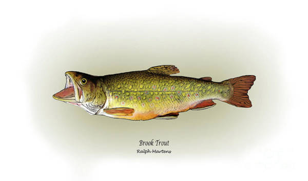 Angling Art Painting - Brook Trout by Ralph Martens
