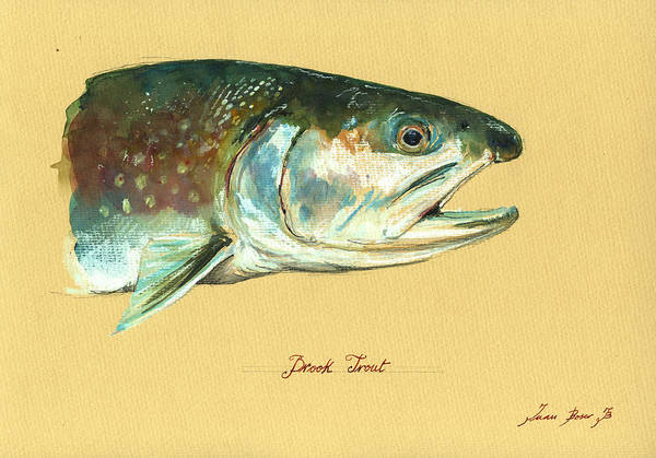 Fly Fishing Painting - Brook Trout Watercolor by Juan  Bosco