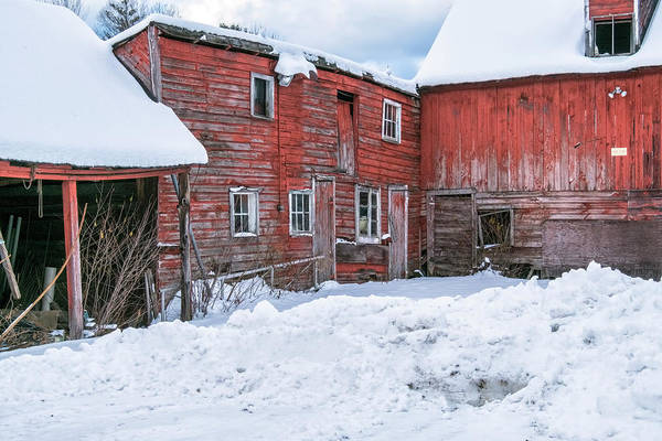 Photograph - Brookline Barns by Tom Singleton