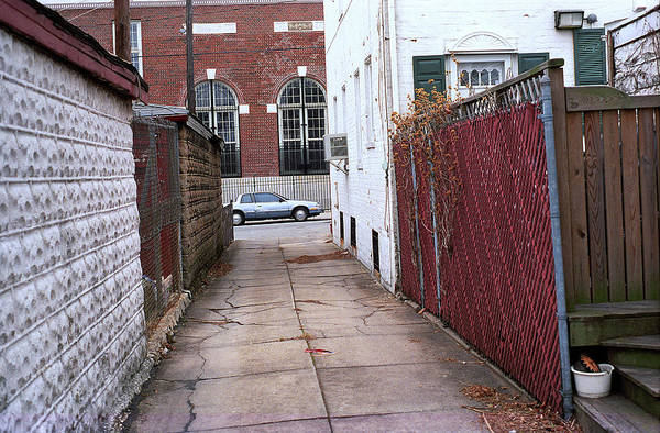 Photograph - Brooklyn Alley by Frank Romeo
