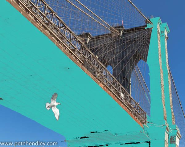 Photograph - Brooklyn Bridge And Bird by Pete Hendley