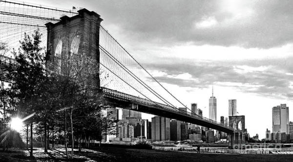 Photograph - Brooklyn Bridge At Dusk In Black And White by Carlos Alkmin