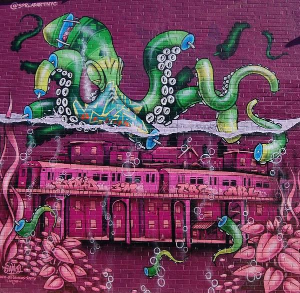 Wall Art - Photograph - Brooklyn Wall Art by Christopher James