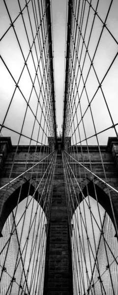 Suspension Bridge Photograph - Brooklyn's Web by Az Jackson