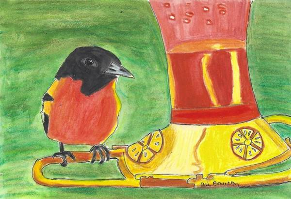 Oriole Drawing - Brooks by Ali Baucom