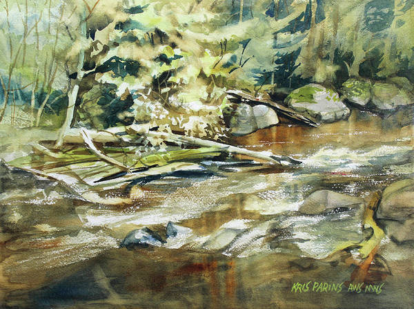Trout Watercolor Wall Art - Painting - Brookside by Kris Parins
