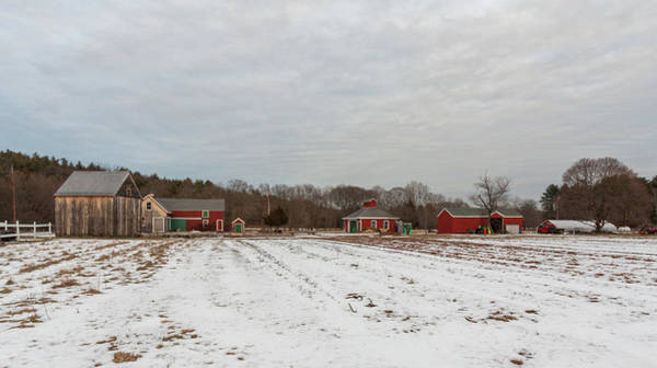 Photograph - Brookwood Farm In Winter by Brian MacLean