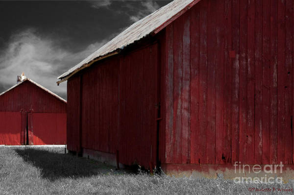 Photograph - Brothers In Red by Paulette B Wright