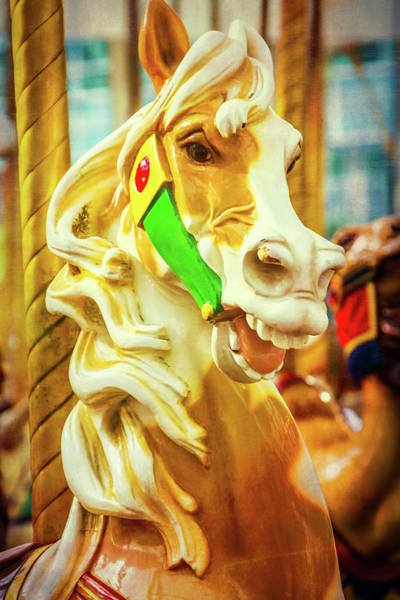 Photograph - Brown And White Carrousel Horse by Garry Gay