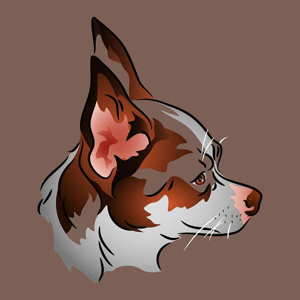 Digital Art - Brown And White Chihuahua In Profile by MM Anderson