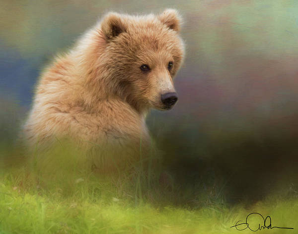 Digital Art - Brown Bear Gazing Back by Gloria Anderson