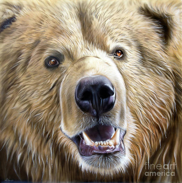 Painting - Brown Bear by Sandi Baker