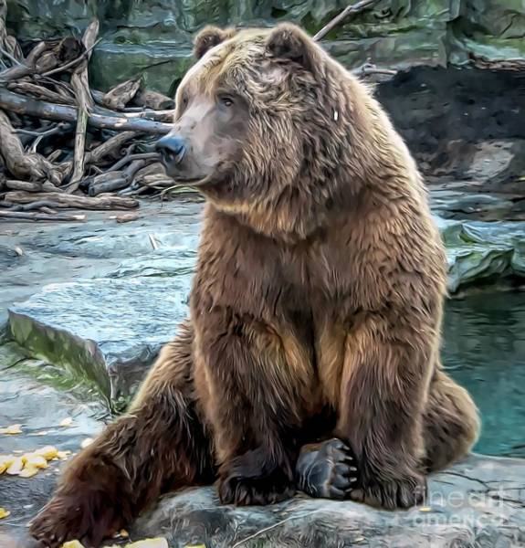 Photograph - Brown Bear Smudge Effect by Rose Santuci-Sofranko