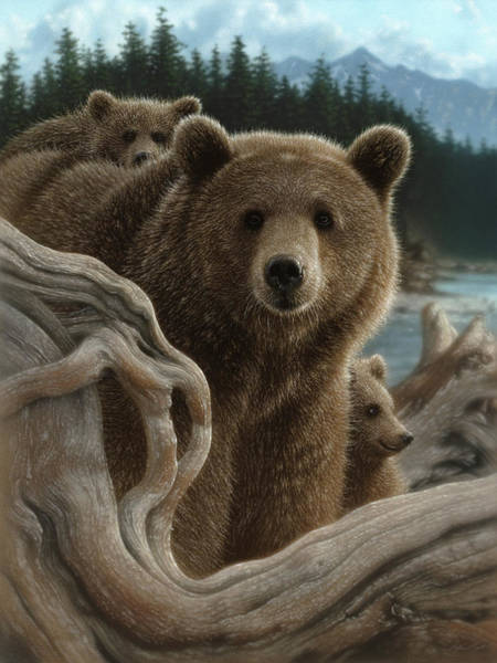 Grizzlies Mixed Media - Brown Bear With Cubs - Backpacking by Collin Bogle