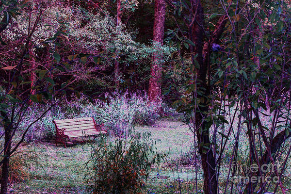 Brown County Indiana Bench False Color Infrared Art Print