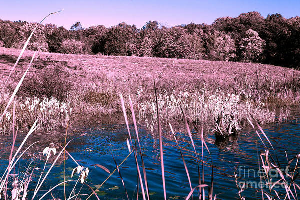 Brown County Indiana Infrared No 1 Art Print