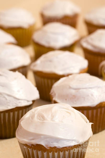 Wall Art - Photograph - Brown Cupcakes With White Frosting by Paul Velgos