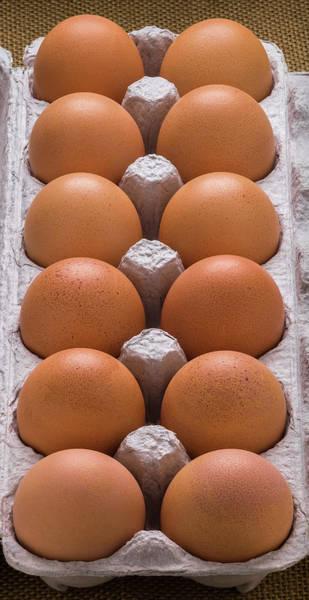 Free Range Photograph - Brown Eggs In Carton by Steve Gadomski