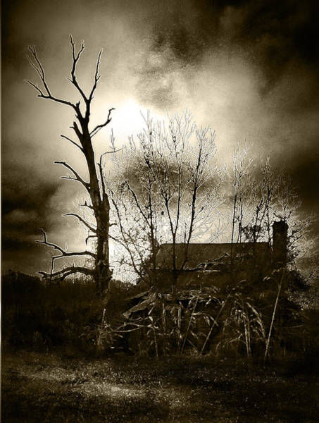 Wall Art - Photograph - Brown House by David A Brown