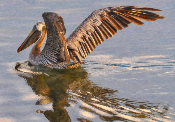 Painting - Brown Pelican Brd901006 by Dean Wittle