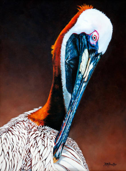 Painting - Brown Pelican by Donna Proctor