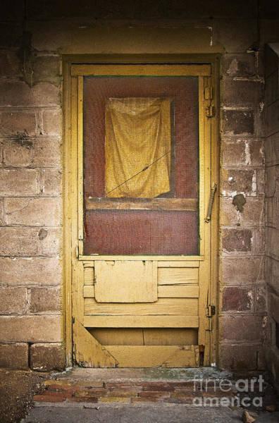 Photograph - Brown Rag Door by Craig J Satterlee
