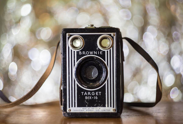 Photograph - Brownie Bokeh by Tracy Munson