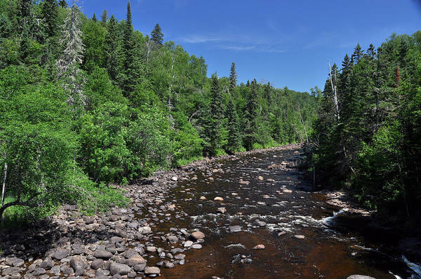Wall Art - Photograph - Brule River by John Ricker