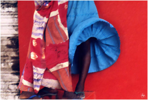 Photograph - Brushstrokes On A Senegal Breeze by Wayne King