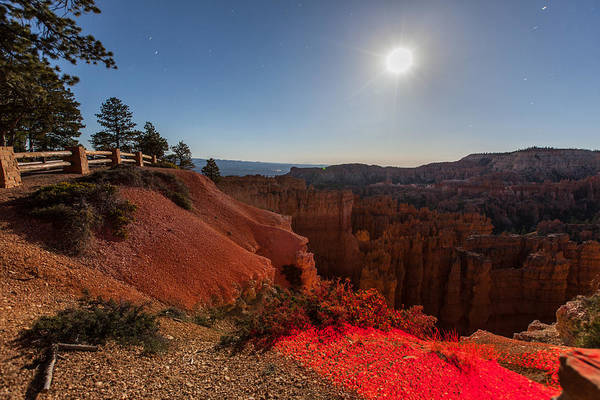 Photograph - Bryce 4456 by Michael Fryd