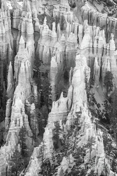 Wall Art - Photograph - Bryce Canyon Black And White Cascading Limestone Columns by Mike Reid