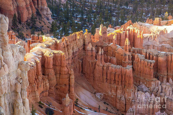 Wall Art - Photograph - Bryce Canyon Bryce Viewpoint Perspective by Mike Reid