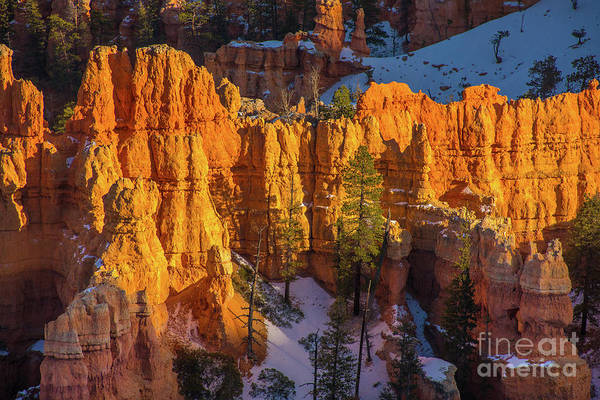 Wall Art - Photograph - Bryce Canyon Column Details by Mike Reid