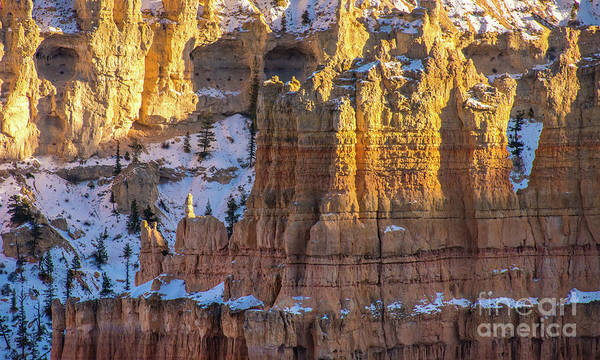 Wall Art - Photograph - Bryce Canyon Column Layers by Mike Reid