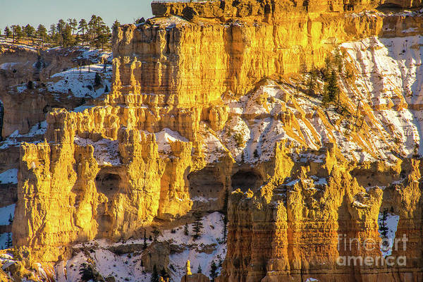 Wall Art - Photograph - Bryce Canyon Columns Of Golden Light Details by Mike Reid