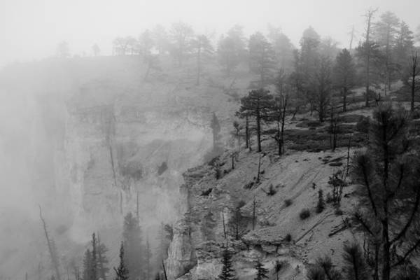 Photograph - Bryce Canyon Fog by Mike Irwin