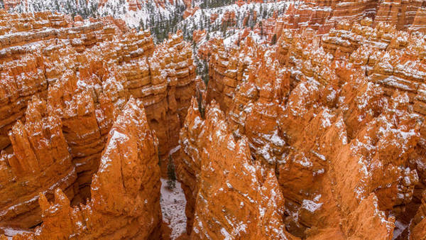 Photograph - Bryce Canyon Hoodoos by Pierre Leclerc Photography