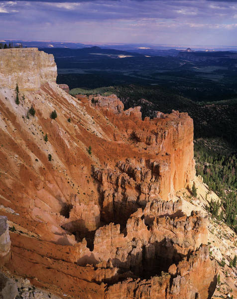 Photograph - Bryce Canyon Hoodoos by Robert Potts