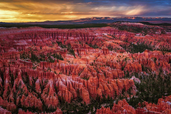 Photograph - Bryce Canyon In The Glow Of Sunset by John Hight