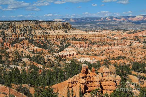 Photograph - Bryce Canyon by Jemmy Archer