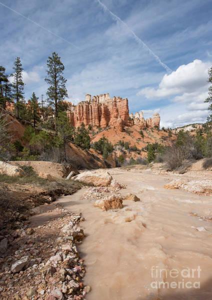Photograph - Bryce Canyon by Juli Scalzi