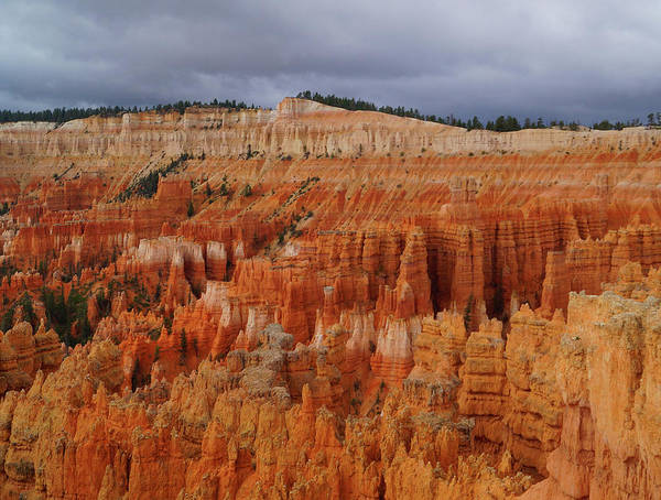 Photograph - Bryce Canyon National Park by Broderick Delaney