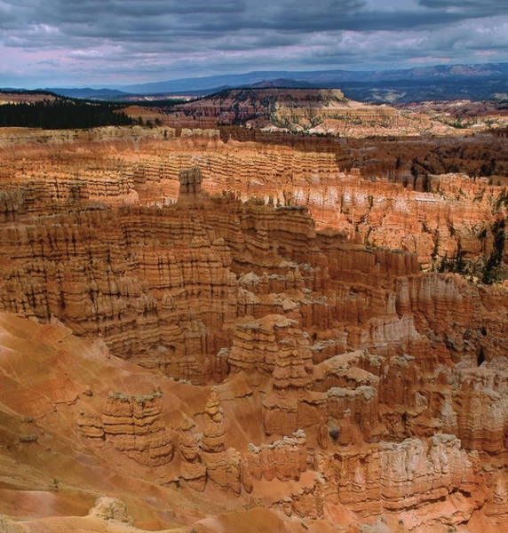 Photograph - Bryce Canyon by Paul Breitkreuz
