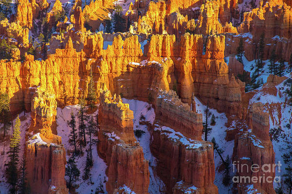 Wall Art - Photograph - Bryce Canyon Rock Columns by Mike Reid