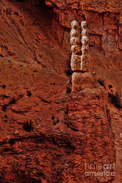 Photograph - Bryce Canyon Rock Couple by Blake Richards