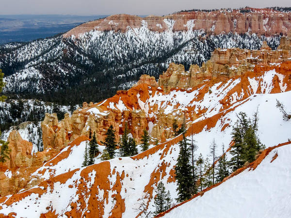 Photograph - Bryce Canyon Series #1 by Patti Deters
