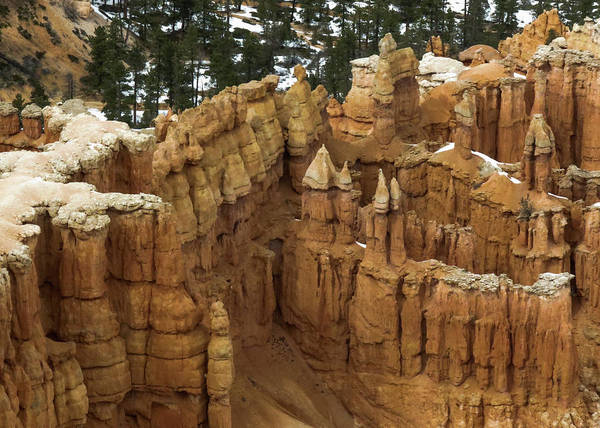 Photograph - Bryce Canyon Series #10 Hoodoo Castles by Patti Deters