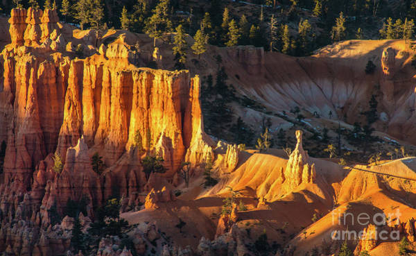 Wall Art - Photograph - Bryce Canyon Setting Sun Light by Mike Reid