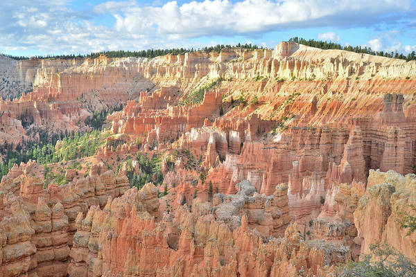 Photograph - Bryce Canyon Sunrise IIi by Ray Mathis