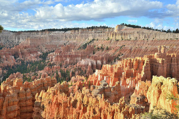 Photograph - Bryce Canyon Sunrise Iv by Ray Mathis